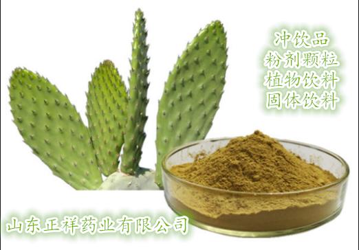 梨果仙人掌沖飲品 固體飲料 植物飲料 源頭廠家 私人訂制 來料加工